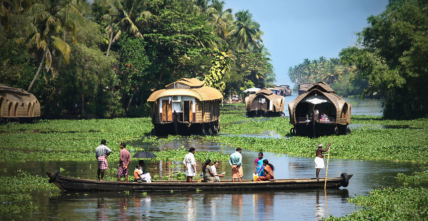 Inde backwaters kerala 1